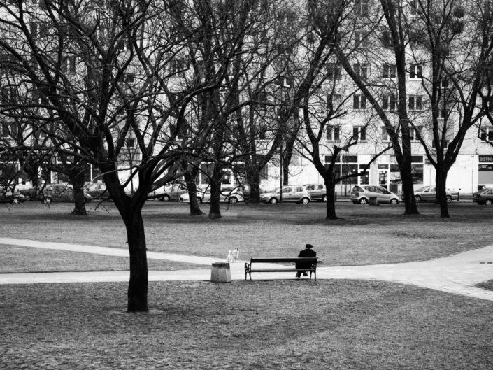 urban landscape with en elder man on a bench in black and white