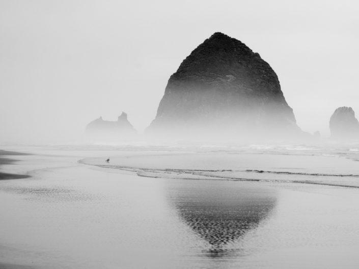 oregon beach in black and white